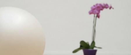 ballon fleur chaps